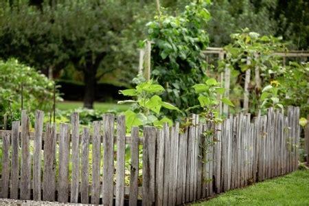 cheap backyard fence ideas 6 inexpensive ideas for garden fencing doityourself