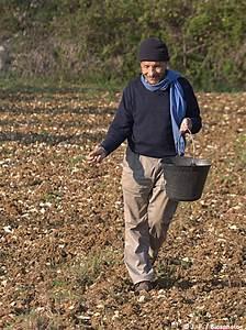 Semer Gazon Periode : mettre en place une prairie fleurie les jardins de no ~ Melissatoandfro.com Idées de Décoration