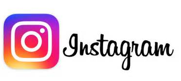 Image result for Instagram follow Logo