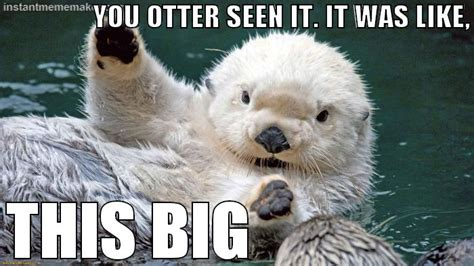 Sea Otter Meme - oliver the otter 171 instant meme maker animals pinterest otters adorable animals and bad day