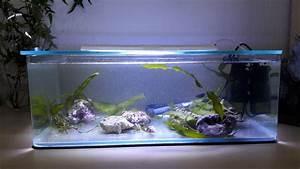 Aquarium Selber Bauen Plexiglas : welches plexiglas f r abdeckung led beleuchtung dein meerwasser forum f r nanoriffe ~ Watch28wear.com Haus und Dekorationen