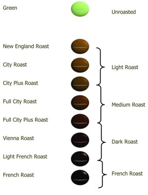 Roast Levels   Roy's Roast to Order Coffee