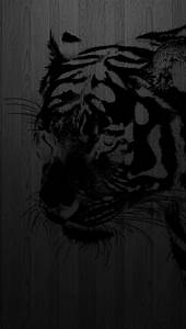 iPhone 5 wallpaper tiger, the eye of the tiger http ...