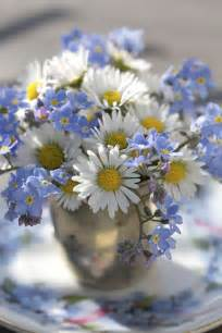 Daisy's and Forget Me Not Flowers