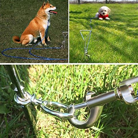 Backyard Leash by Tie Out Cable Stake Focuspet Pet Leash With Tie Out