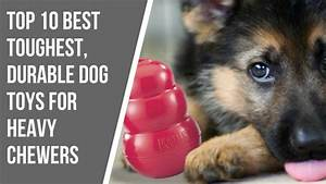 powerful chewer dog toys wow blog With best dog chews for heavy chewers