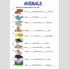 Animals Cancan't Worksheet  Free Esl Printable Worksheets Made By Teachers