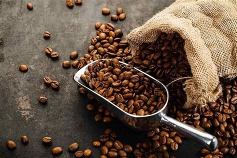 The mill city 1kg coffee roaster is truly a workhorse and i would highly recommend it to anyone in the market. Tired eyes? The Benefits of Coffee are a surprising aid - Ehsaaan.com