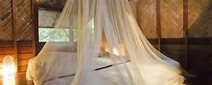 Mücken Im Schlafzimmer Bekämpfen : bildquelle stephane106 ~ Markanthonyermac.com Haus und Dekorationen