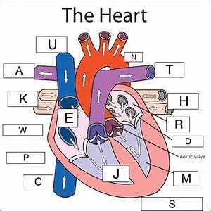 35 Label Of The Heart