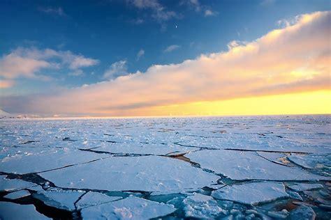 animals    north pole worldatlascom