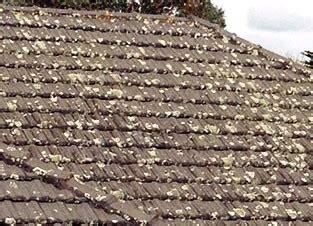 flechten auf dachpfannen entfernen flechten entfernen dachreinigung und moosentfernung