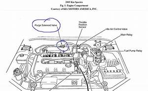 2005 Kia Spectra Engine Diagram