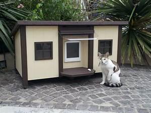 Cabane Pour Chat Exterieur Pas Cher : 40 id es cr atives sur le th me maisonnette pour chat ~ Teatrodelosmanantiales.com Idées de Décoration