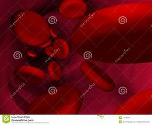 Red  Blood  Cells Inside Vein Stock Photo