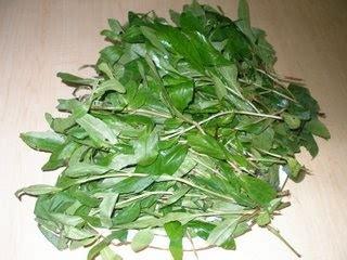 kugans kitchen manjal karisalankanni keerai
