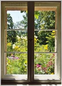 Fototapete Fenster Aussicht : die besten 25 fototapete fenster ideen auf pinterest ~ Michelbontemps.com Haus und Dekorationen
