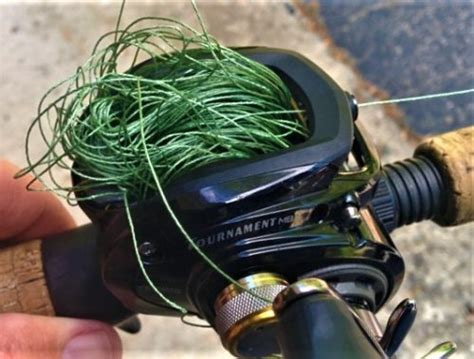prevent baitcasting backlash  birds nests
