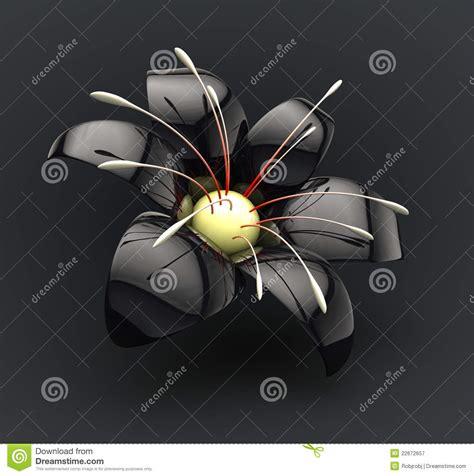 schwarze lilie blume schwarze blume lizenzfreie stockfotografie bild 22672657