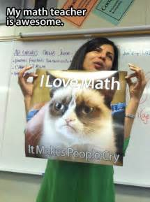 math cats 22 teachers being awesome pleated