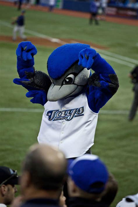 Toronto Blue Jays toronto blue jays the canadian encyclopedia