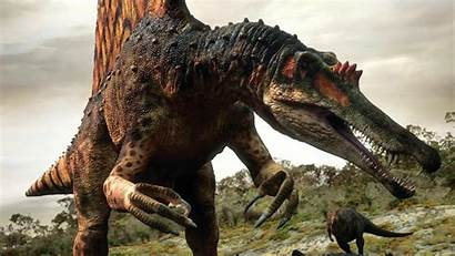 Spinosaurus Wallpapers Code Wallpapersinhq Dinosaur Dinosaurs Wallpapersafari