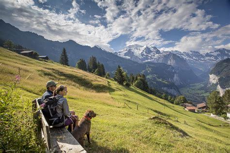 jungfrau und löwe erleben sie wanderungen in der schweizer jungfrau region