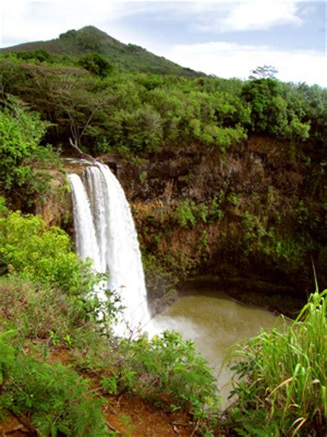 tropical island waterfall royalty free stockazoo