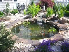 Water Garden Water Garden 2