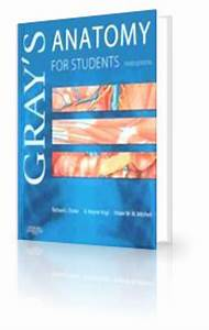 Grays anatomy, Anatomy and Student on Pinterest