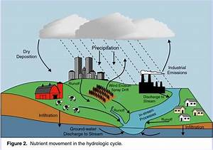 Monitoring Nutrients in the Major Rivers Draining to ...