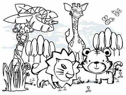Coloring Animal Pages Wild Cartoon