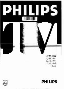 Philips 21pt134b  Television Download User Guide For