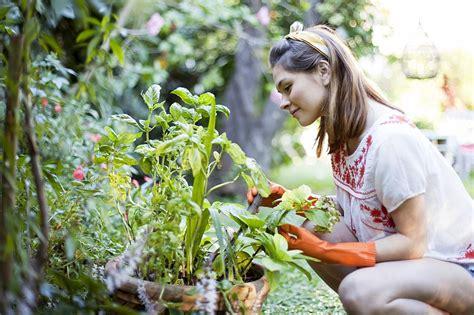 plan  farm  garden  feed  family
