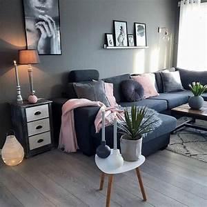 Idee Salon Scandinave : idee deco salon gris et rose ~ Melissatoandfro.com Idées de Décoration