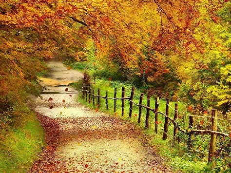 Beautiful Autumn Wallpapers Desktop by Wallpapers Beautiful Autumn Scenery Wallpapers