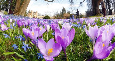 Nedēļas foto. Pavasaris Vācijā | LA.lv