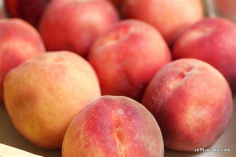 Palisade Peach Crisp Soffia Wardy