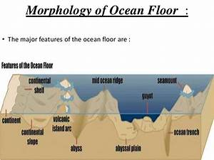 Morphology Of Ocean Floor