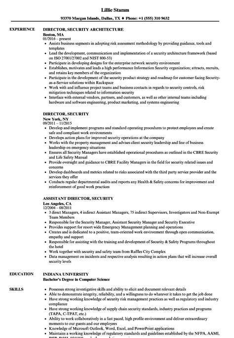 Director Of Security Resume Exles by Director Security Resume Sles Velvet