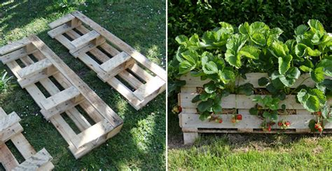 strawberry pallet planter diy crafts