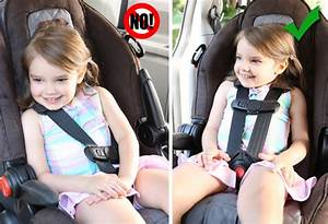 Step 2: Forward-Facing Seats | AAA Safe Seats 4 KidsAAA ...