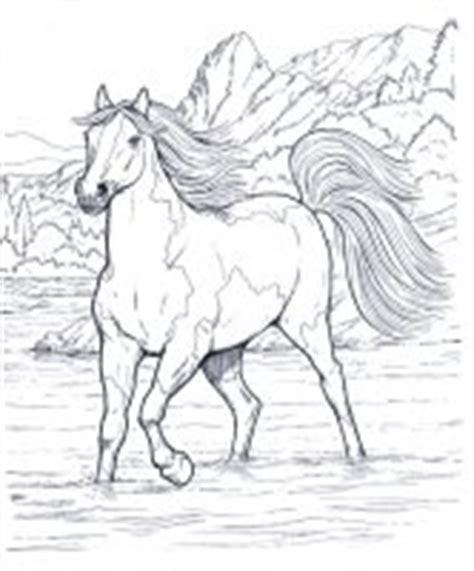 disegni da colorare  cavallicavalli da colorare