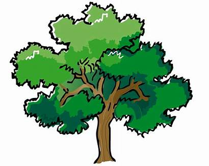 Clip Landscaping Cliparts Tree Attribution Forget Link