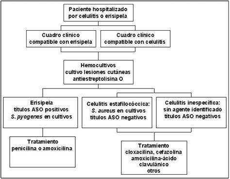 oleodinamica dispense erisipela recurrente pdf