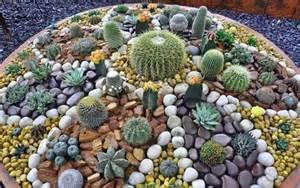 Mini Jardines De Cactus by Jardines Decorados Con Piedras De Varios Colores