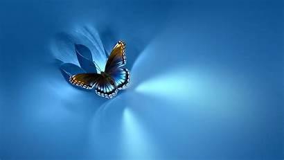 Butterfly Desktop Wallpapers Background Backgrounds Screen Flower