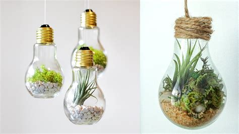 diy crafts  room decor terrarium   ligh bulb
