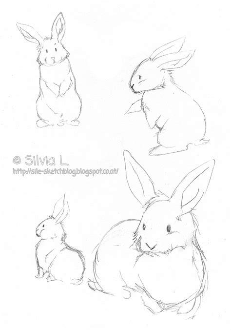 sketchblog kleine suesse hasis