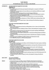 Resume For Managing Director Position Partner Marketing Manager Resume Samples Velvet Jobs